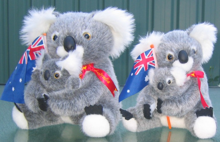 koala toys with baby, Aussie flag and in corporate jackets with logo embroidery