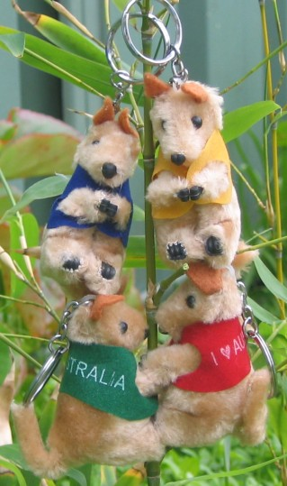 Clip-on kangaroo key rings
