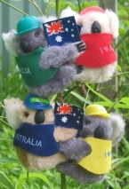 Koalas with flags, caps & vests
