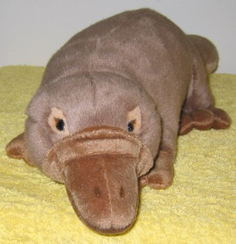 perfect platypus toy