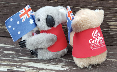 Clip-on koalas in colored jackets with country flags